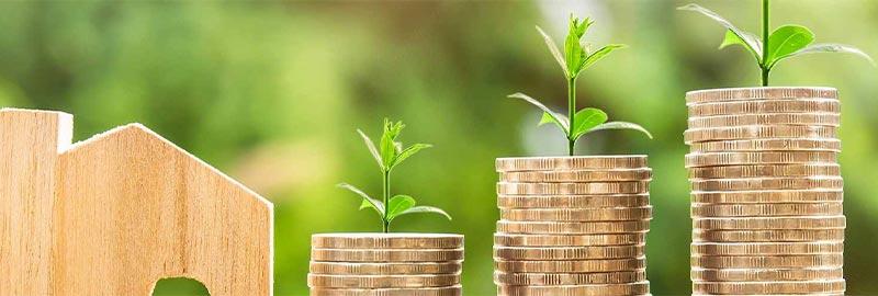 Hintergrundwissen-zum-Thema-Geld-und-Vermoegen